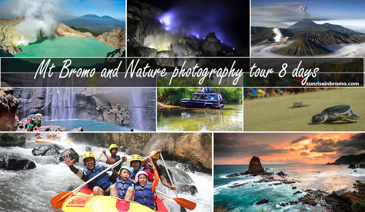 bromo nature photography 8 days